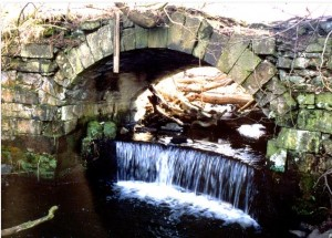 Outlet of Adam's Drain at Eliston Bridge