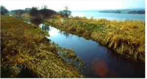 Canal circling Barr Loch